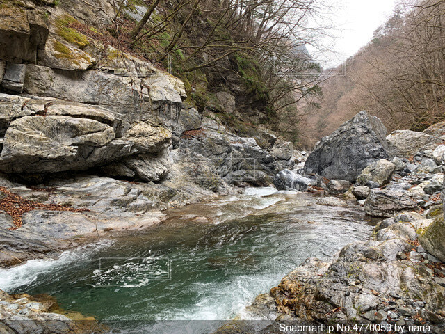 渓流の写真・画像素材[4770059]