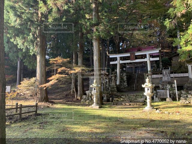 山と神社の写真・画像素材[4770052]