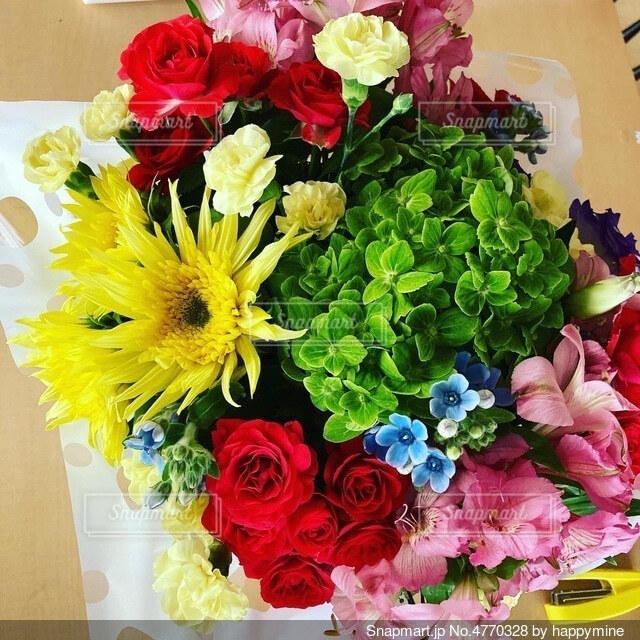 カラフルな花の写真・画像素材[4770328]