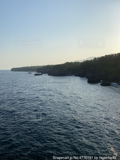 城ヶ崎海岸の写真・画像素材[4770191]