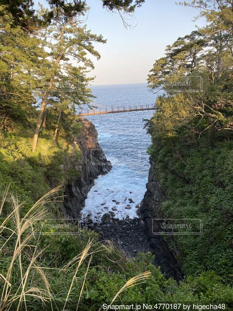 城ヶ崎吊り橋の写真・画像素材[4770187]