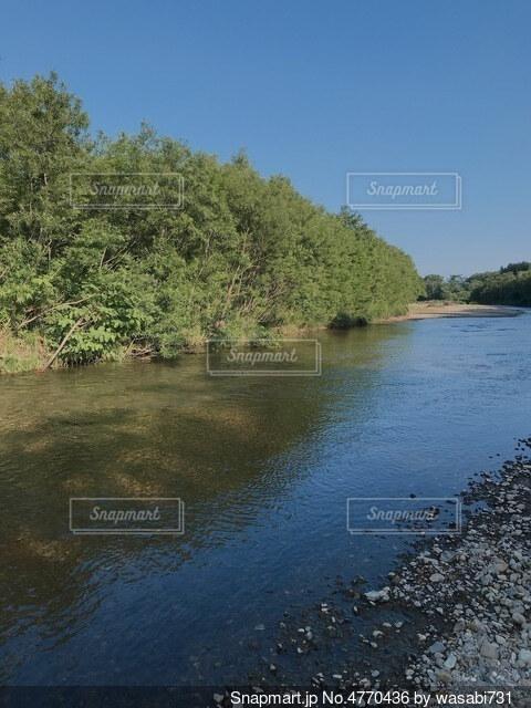 川の写真・画像素材[4770436]
