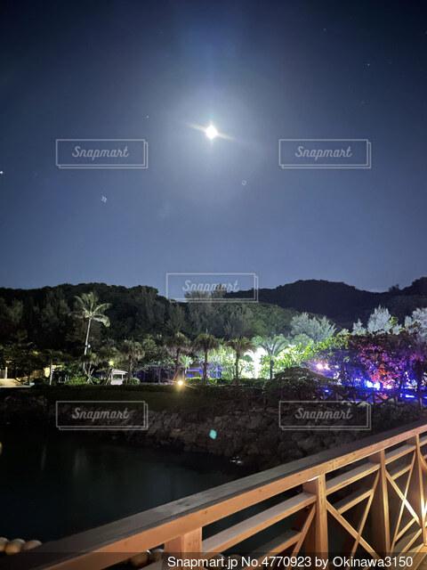 橋の上からパシャリの写真・画像素材[4770923]