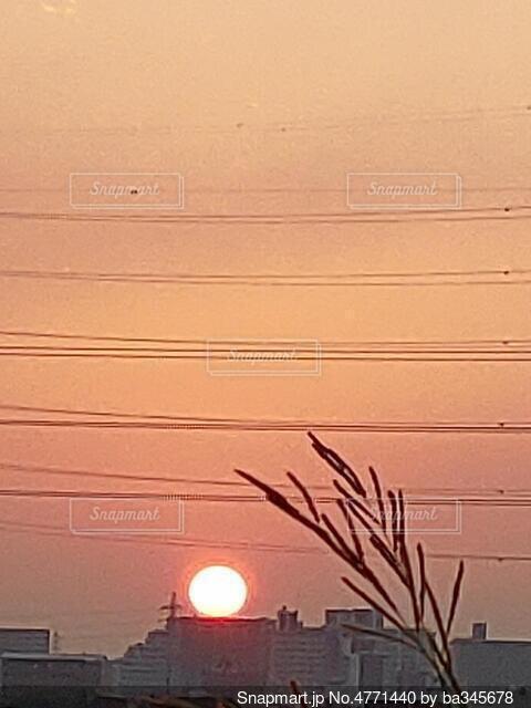 朝陽の写真・画像素材[4771440]