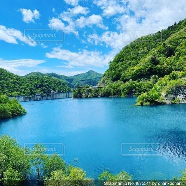 木々に囲まれた大きな水域の写真・画像素材[4875511]