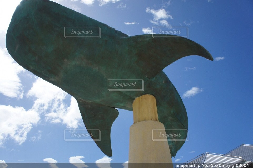 水族館,アート,沖縄,美ら海水族館,ジンベイザメ