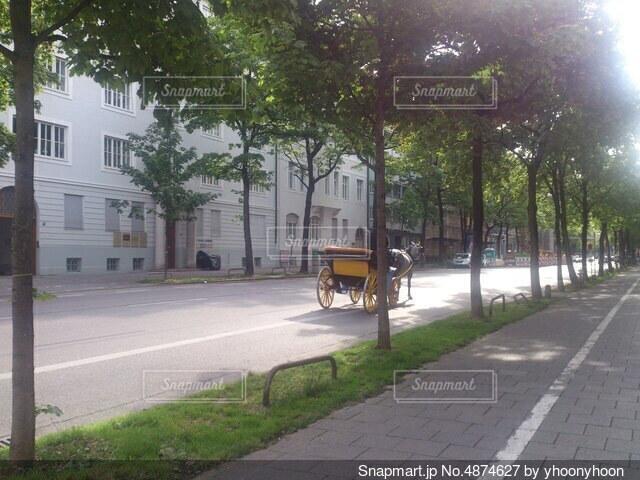 通りの側に木がある道の写真・画像素材[4874627]