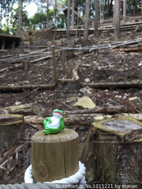 自然の中でくつろぐカエルの置物の写真・画像素材[1015221]