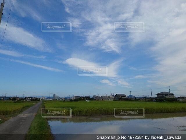 飛行機雲の写真・画像素材[4872381]
