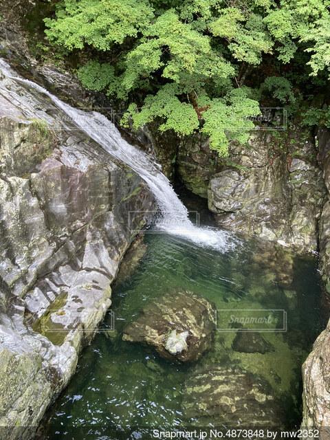 大自然の滝の写真・画像素材[4873848]