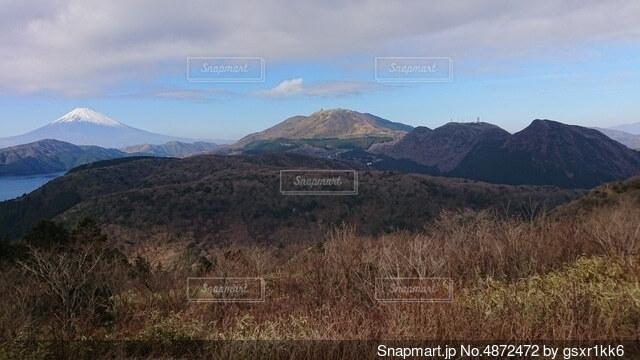 背景に山がある背の高い草原の眺めの写真・画像素材[4872472]