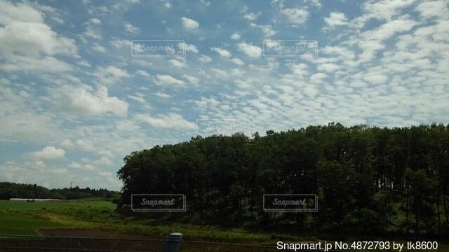 羊雲の写真・画像素材[4872793]