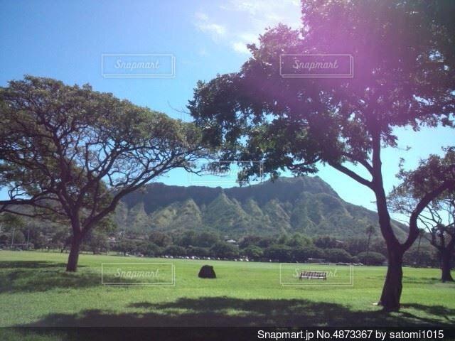 暑い日の風景の写真・画像素材[4873367]