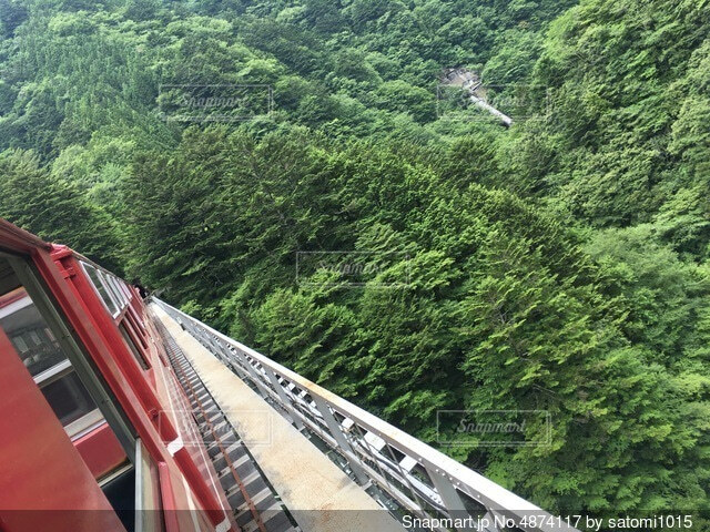 森の中の鉄道の写真・画像素材[4874117]