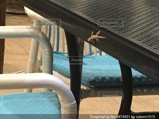 フェンスの前に座っている椅子の写真・画像素材[4874931]