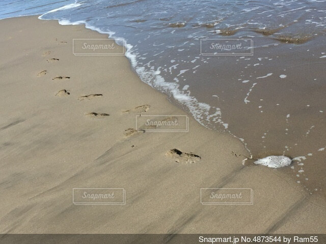 波打ち際を歩くの写真・画像素材[4873544]