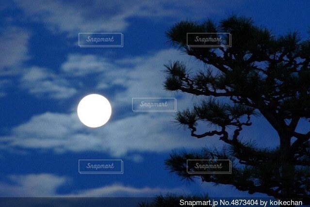 曇りの日に空を飛んでいる人の写真・画像素材[4873404]