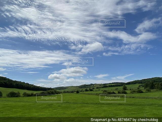 青空と広大な草原の写真・画像素材[4874647]