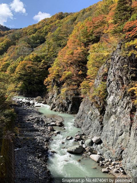 紅葉と川の写真・画像素材[4874041]