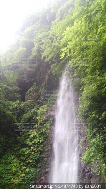 養老の滝の写真・画像素材[4874743]