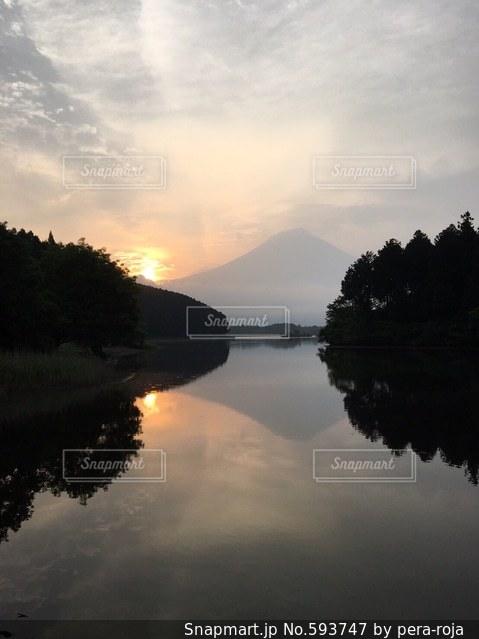 自然の写真・画像素材[593747]