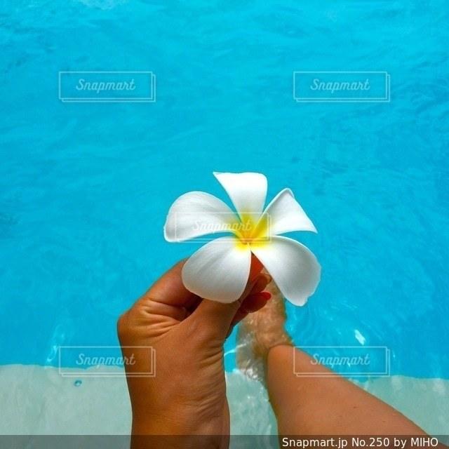 水のプールで泳いでいる女性の写真・画像素材[250]
