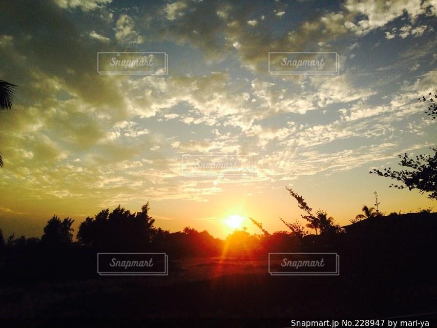 自然の写真・画像素材[228947]