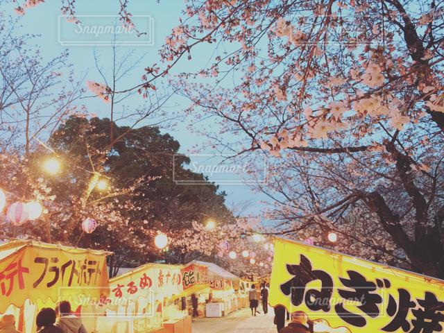 風景 - No.122115