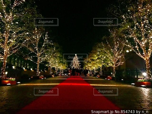 Christmasの写真・画像素材[854743]
