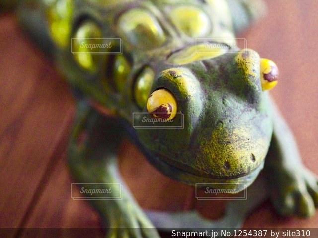 カエルの置物の写真・画像素材[1254387]