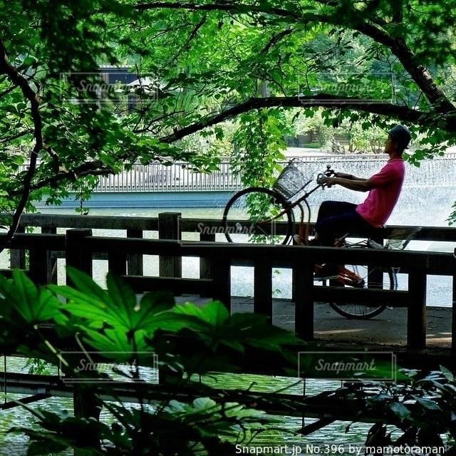 川に架かる橋の写真・画像素材[396]