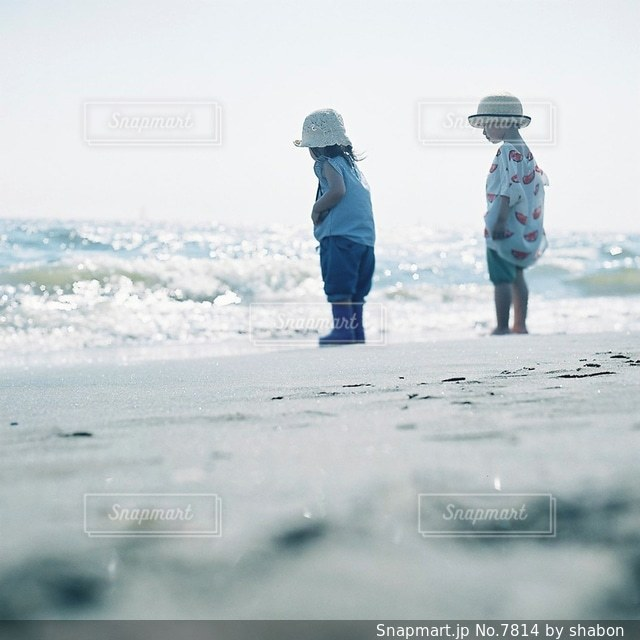 自然の写真・画像素材[7814]