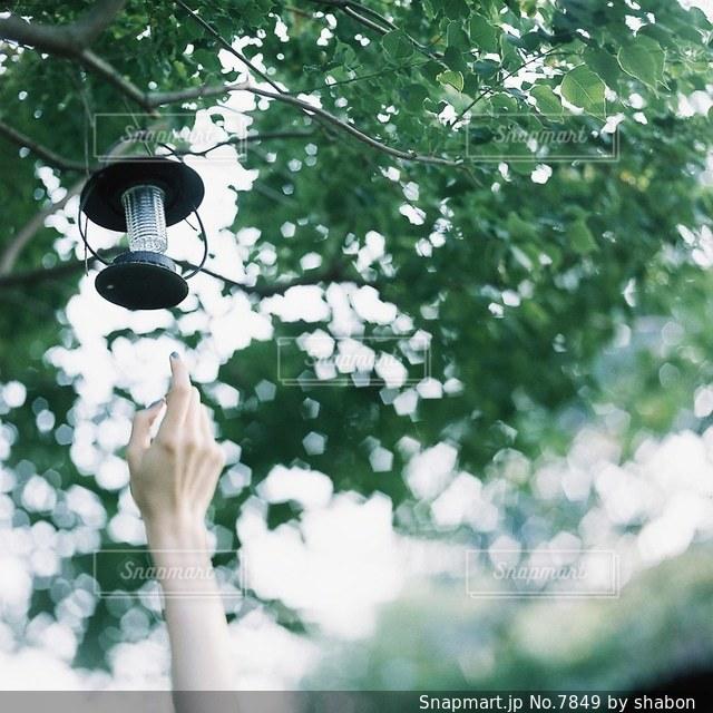 屋外の写真・画像素材[7849]