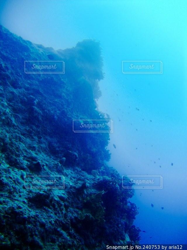 海の写真・画像素材[240753]