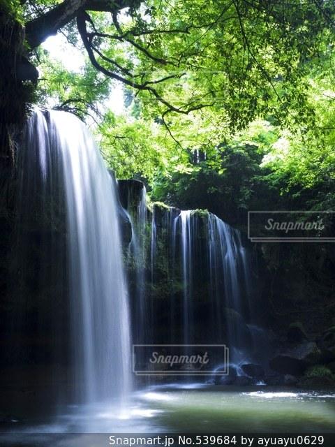 自然の写真・画像素材[539684]