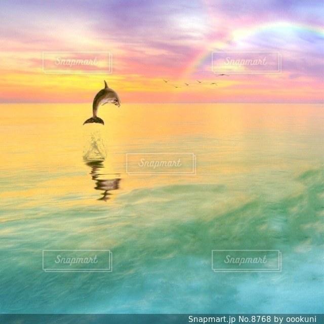 自然の写真・画像素材[8768]