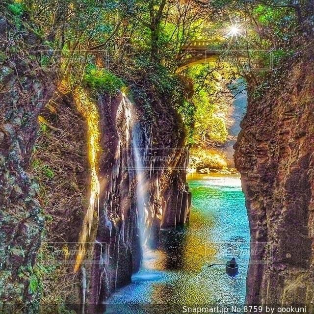 自然の写真・画像素材[8759]