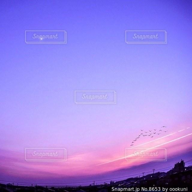 自然の写真・画像素材[8653]