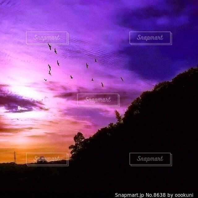 自然の写真・画像素材[8638]