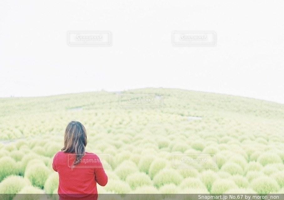 緑の草原の人の写真・画像素材[67]