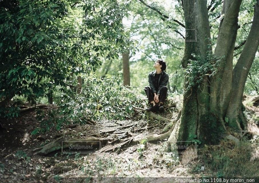 フォレスト内のツリーの横に立っている人 - No.1108