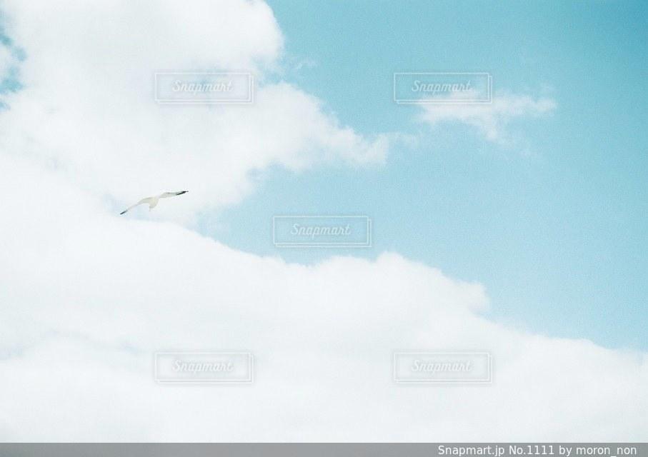 空には雲のグループの写真・画像素材[1111]