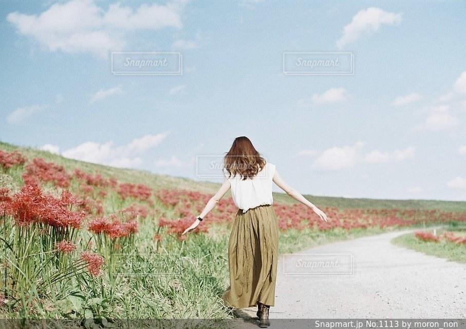凧の飛行少女の写真・画像素材[1113]