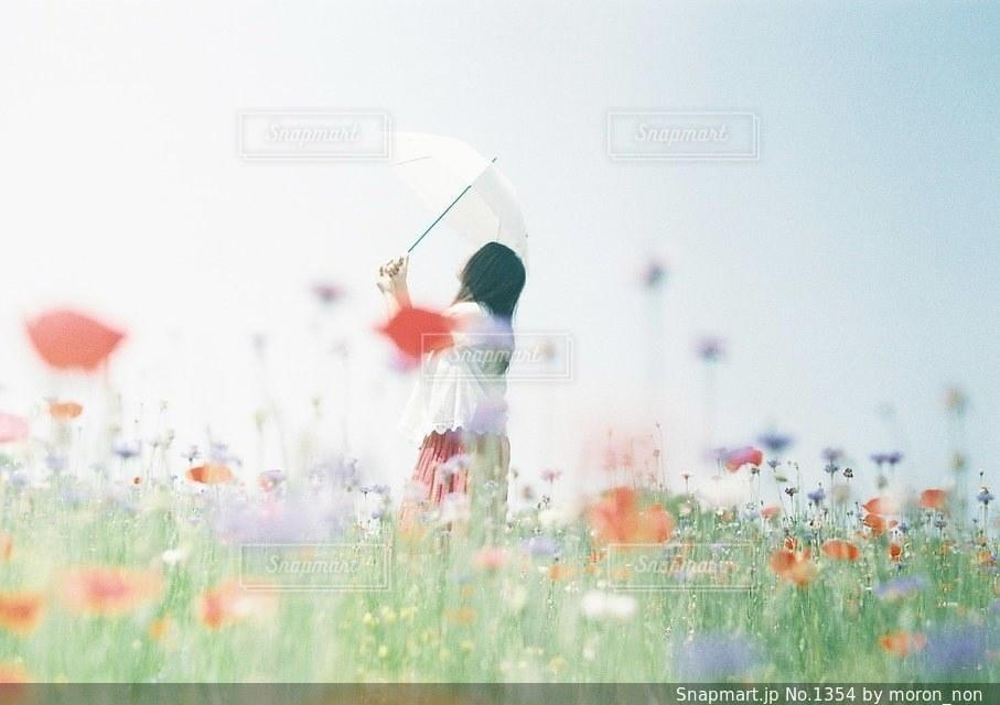 近くに傘のアップの写真・画像素材[1354]