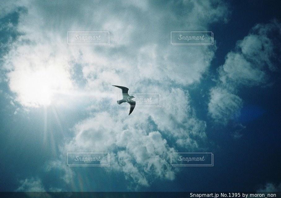 曇りの日に空気を通って飛んで男の写真・画像素材[1395]