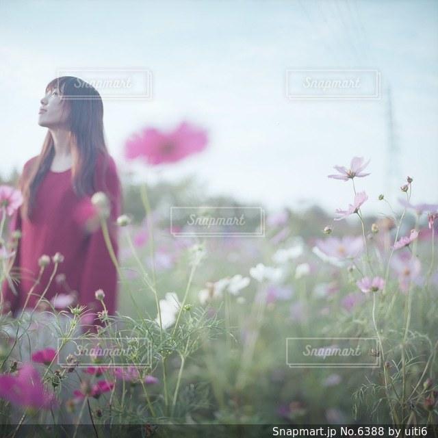 女性の写真・画像素材[6388]