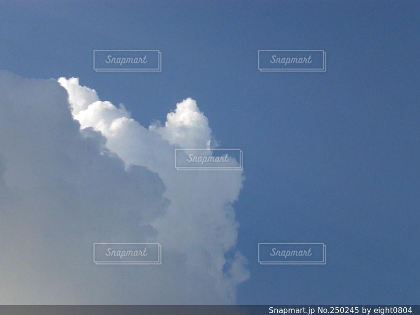 風景の写真・画像素材[250245]