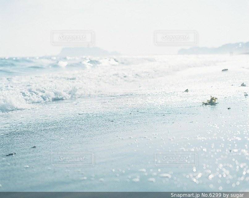自然の写真・画像素材[6299]