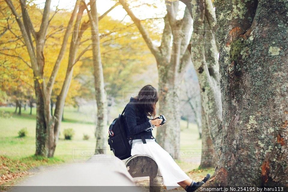 女性の写真・画像素材[254195]