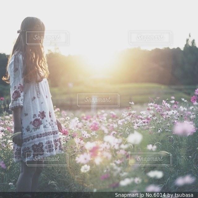 女性の写真・画像素材[6014]